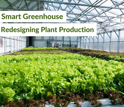 Smart Greenhouse – Redesigning Plant Production