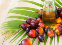 The Benefits of Palm Oil