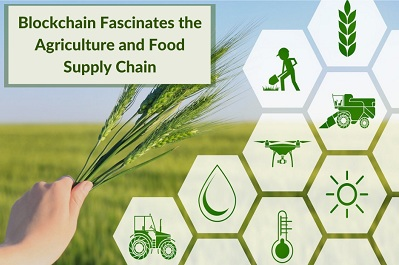 Blockchain Fascinates the Agriculture and Food Supply Chain