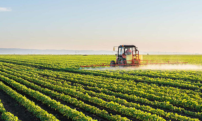 Leveraging AI to maximize India's Agricultural output